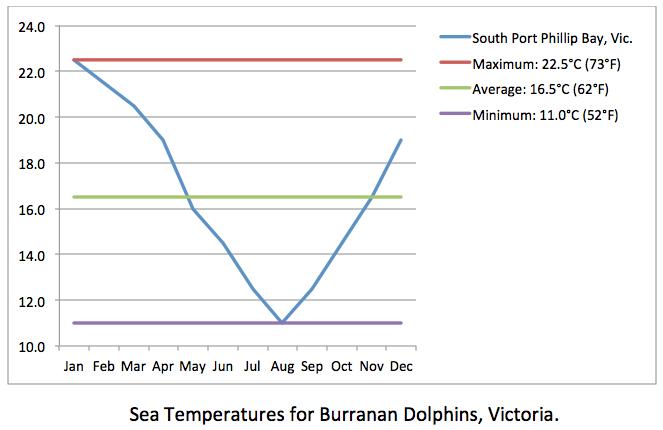 BURRUNAN DOLPHINS sea temp