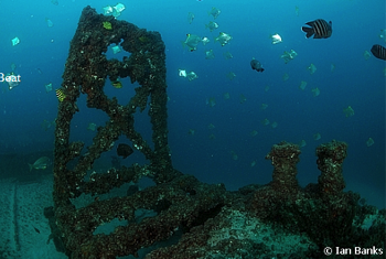 CURTIN ARTIFICIAL REEF 5