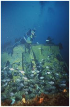 J5 Submarine c
