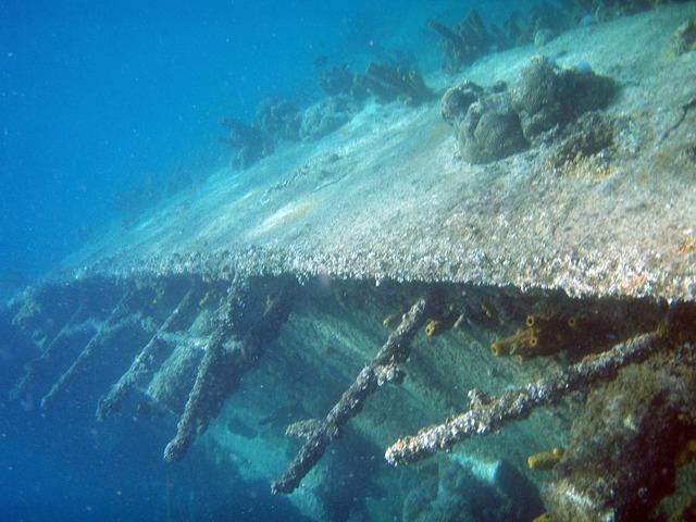 Yongala Wreck 4